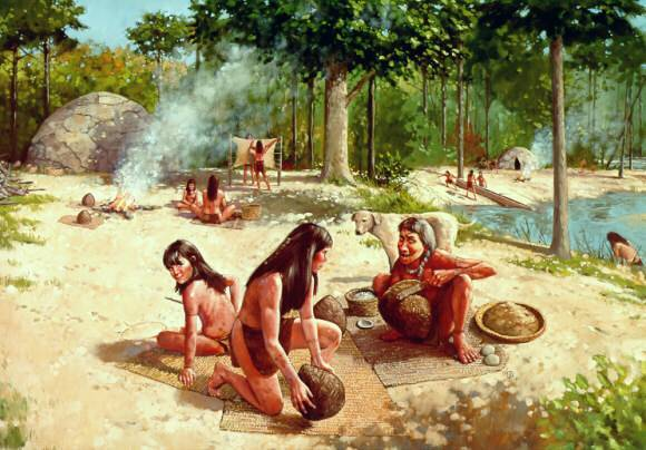 history of the woodland people The third period of north american history, after the archaic period, is the woodland period the early woodland period began in the southern and midwestern part of north america about 1200 bc people like the pueblo people settled down more in permanent villages and towns more and more people.